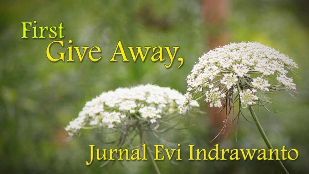 BANNER EVIINDRAWANTO1 First Give Away Jurnal Evi Indrawanto